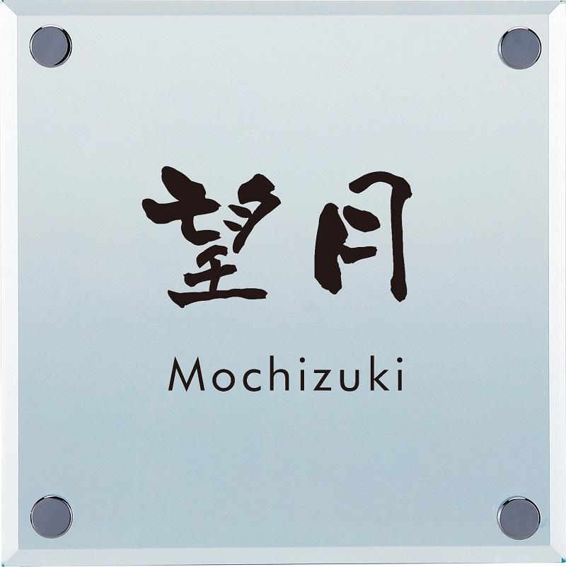 丸三タカギ MNG-2 Monoglass(モノグラス) IELOGO表札画像